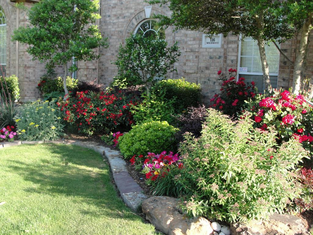 5 Tips To Make Your Yard Look Like You Hired A Landscaper Native